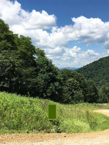 Tbd Shell Creek Road, Roan Mountain, TN 37687 (MLS #9919086) :: Conservus Real Estate Group