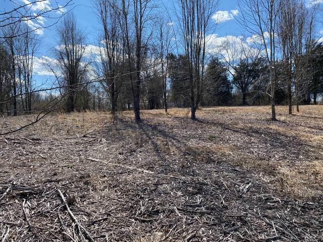 Tbd Muddy Creek Road, Blountville, TN 37617 (MLS #9919143) :: Bridge Pointe Real Estate