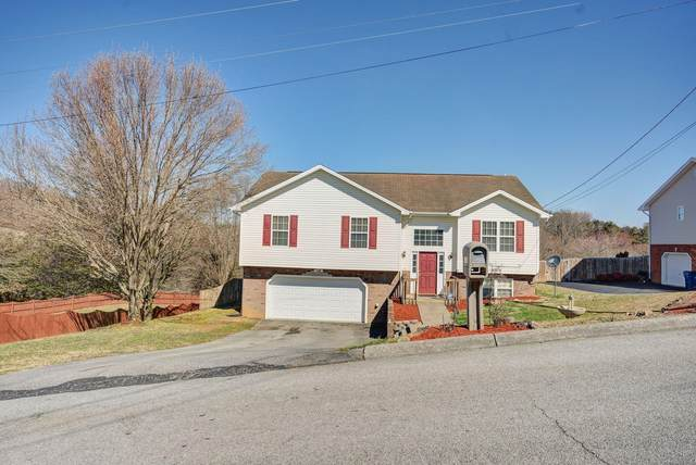 250 Chimney Top Lane, Jonesborough, TN 37659 (MLS #9919189) :: Bridge Pointe Real Estate