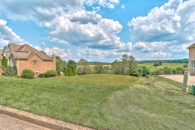 141 Laurel Ridge Drive, Jonesborough, TN 37659 (MLS #9919223) :: Conservus Real Estate Group