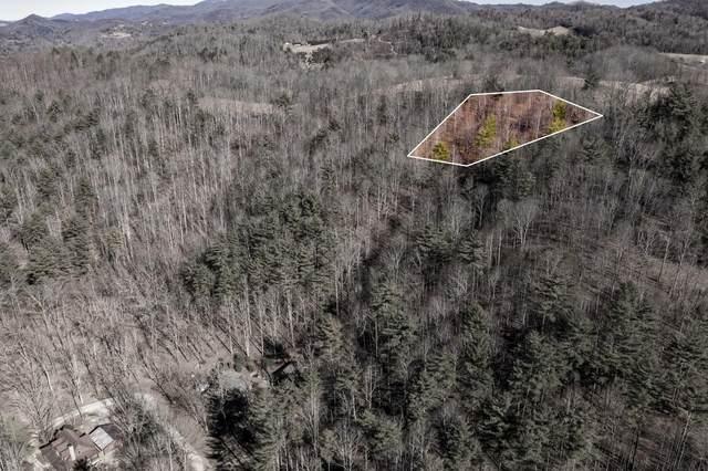 822 Sugar Hollow Road, Butler, TN 37640 (MLS #9919308) :: Conservus Real Estate Group