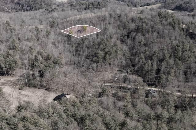 822 Sugar Hollow Road, Butler, TN 37640 (MLS #9919310) :: Conservus Real Estate Group