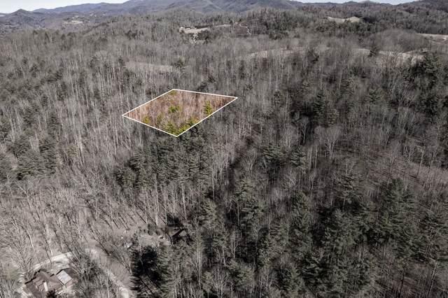 822 Sugar Hollow Road, Butler, TN 37640 (MLS #9919311) :: Conservus Real Estate Group
