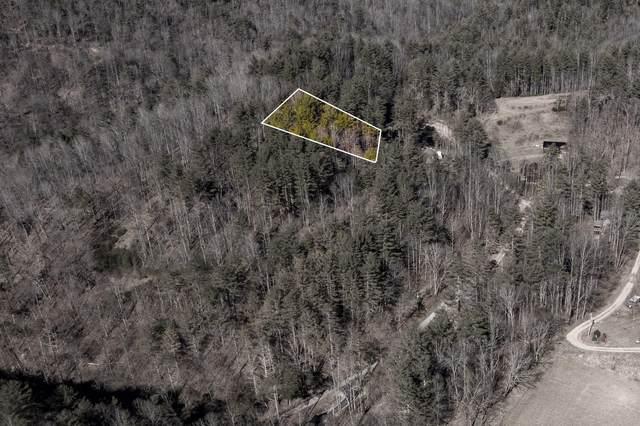 822 Sugar Hollow Road, Butler, TN 37640 (MLS #9919312) :: Conservus Real Estate Group
