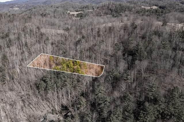 822 Sugar Hollow Road, Butler, TN 37640 (MLS #9919314) :: Conservus Real Estate Group