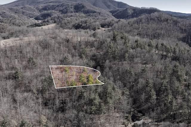 822 Sugar Hollow Road, Butler, TN 37640 (MLS #9919315) :: Conservus Real Estate Group