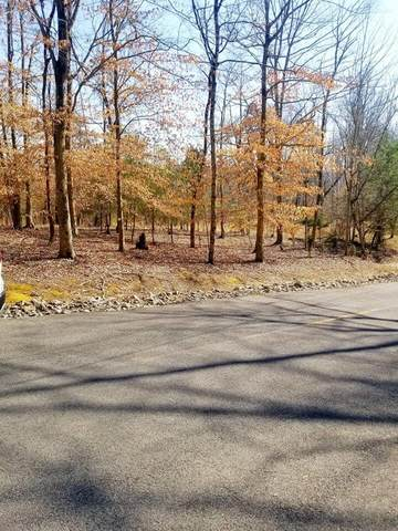 1511 Catoosa Drive, Mooresburg, TN 37811 (MLS #9919388) :: Conservus Real Estate Group