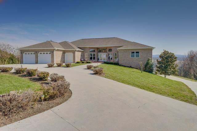 231 Roanoke Drive, Surgoinsville, TN 37873 (MLS #9919457) :: Conservus Real Estate Group