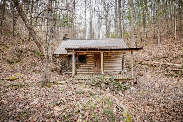 Tbd Harris Hollow Road, Erwin, TN 37650 (MLS #9919529) :: Tim Stout Group Tri-Cities
