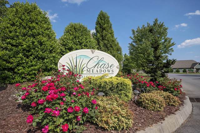 1980 Lydia Lane, Kingsport, TN 37664 (MLS #9919664) :: Conservus Real Estate Group