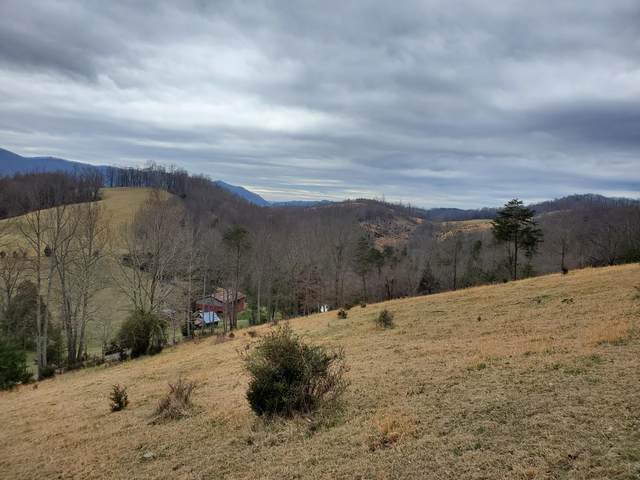 Tbd Mineral Hill Lane, Gate City, VA 24251 (MLS #9919688) :: Red Door Agency, LLC