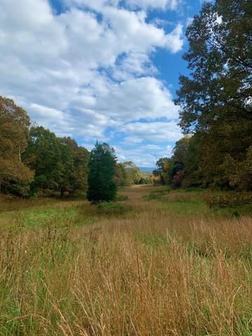 Tbd Highway 11, Surgoinsville, TN 37873 (MLS #9919716) :: Red Door Agency, LLC
