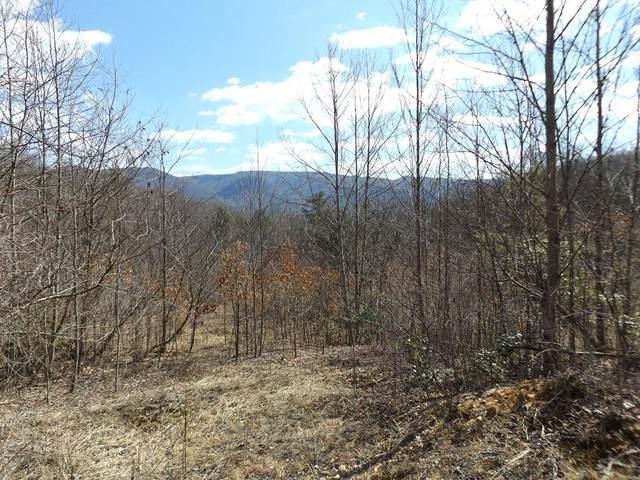 182 Josiah Trail, Elizabethton, TN 37643 (MLS #9919769) :: The Lusk Team