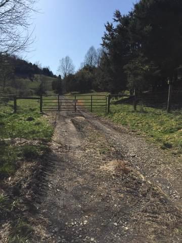 000 Federal Road, Mendota, VA 24270 (MLS #9919945) :: Tim Stout Group Tri-Cities