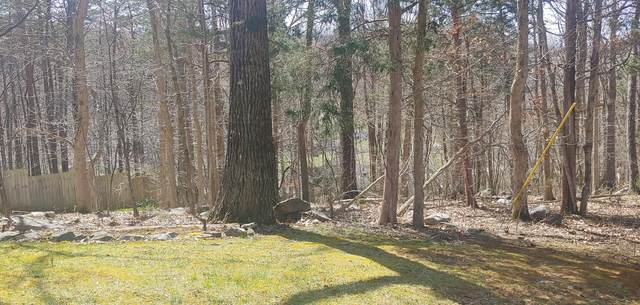 Lot 15 Eagles Nest Drive, Johnson City, TN 37601 (MLS #9919995) :: Red Door Agency, LLC