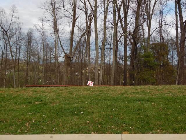 439 English Ivy Trail, Jonesborough, TN 37659 (MLS #9920032) :: Bridge Pointe Real Estate