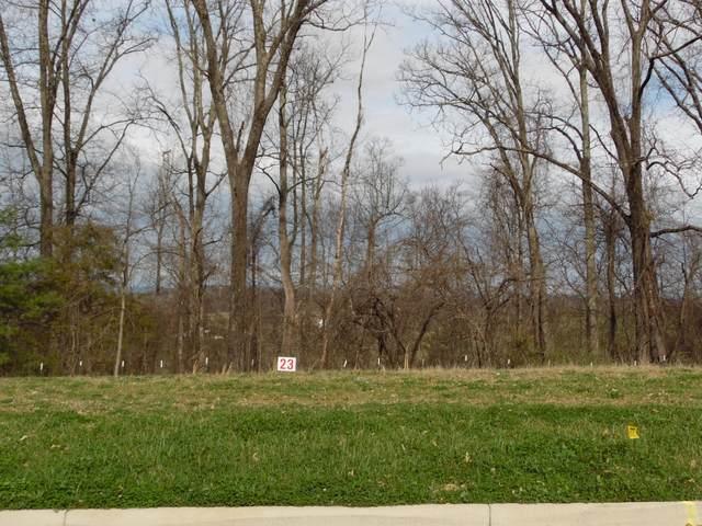445 English Ivy Trail, Jonesborough, TN 37659 (MLS #9920033) :: Bridge Pointe Real Estate