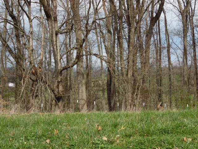 477 English Ivy Trail, Jonesborough, TN 37659 (MLS #9920039) :: Bridge Pointe Real Estate