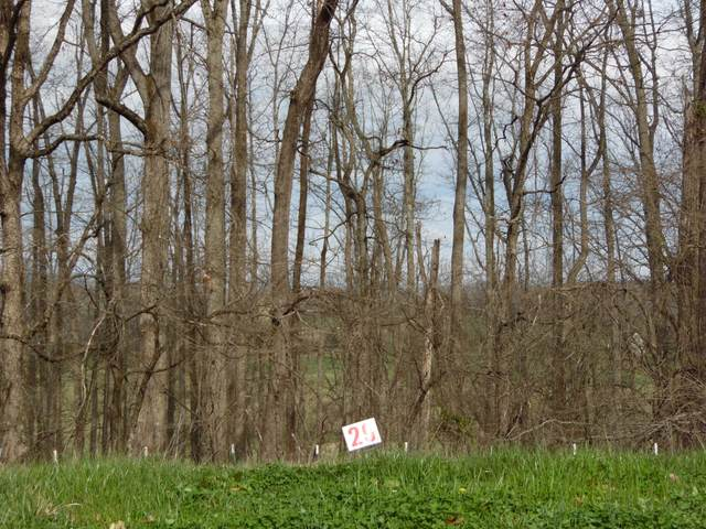 483 English Ivy Trail, Jonesborough, TN 37659 (MLS #9920040) :: Bridge Pointe Real Estate