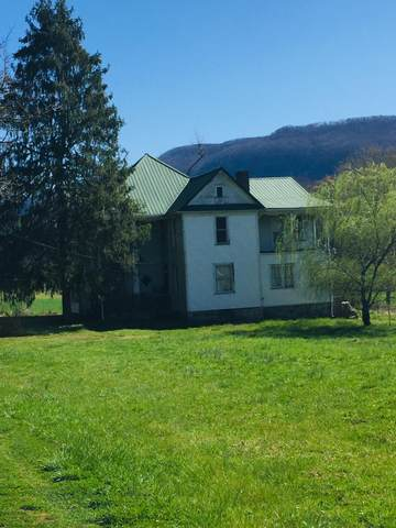 4336 East Stone Gap Road, Big Stone Gap, VA 24219 (MLS #9920146) :: Highlands Realty, Inc.