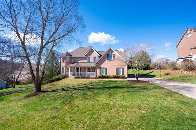 1105 Dover Drive, Kingsport, TN 37664 (MLS #9920166) :: Conservus Real Estate Group