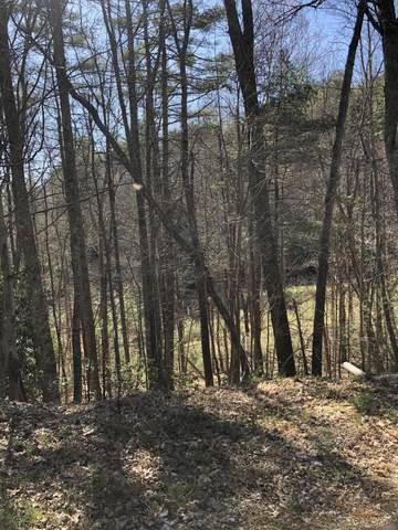 Tbd Of Forge Creek Road, Mountain City, TN 37683 (MLS #9920268) :: Bridge Pointe Real Estate