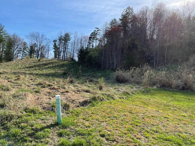Tbd Charles St Lot 10, Clintwood, VA 24228 (MLS #9920318) :: The Lusk Team