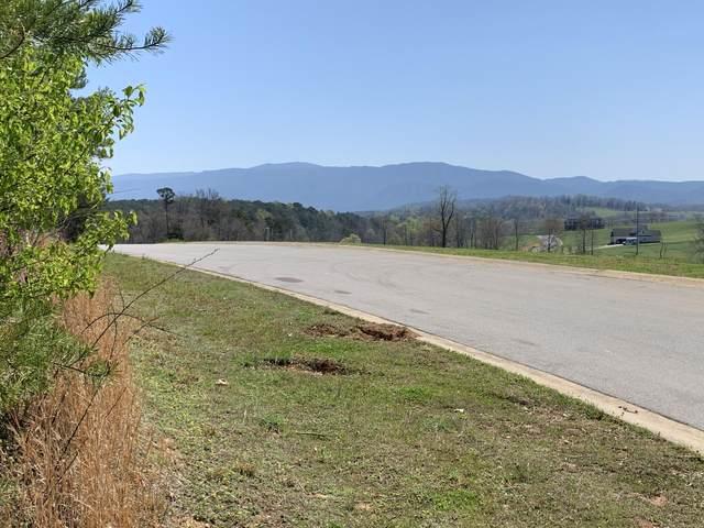 00 River Pointe Drive, Greeneville, TN 37743 (MLS #9920350) :: The Lusk Team