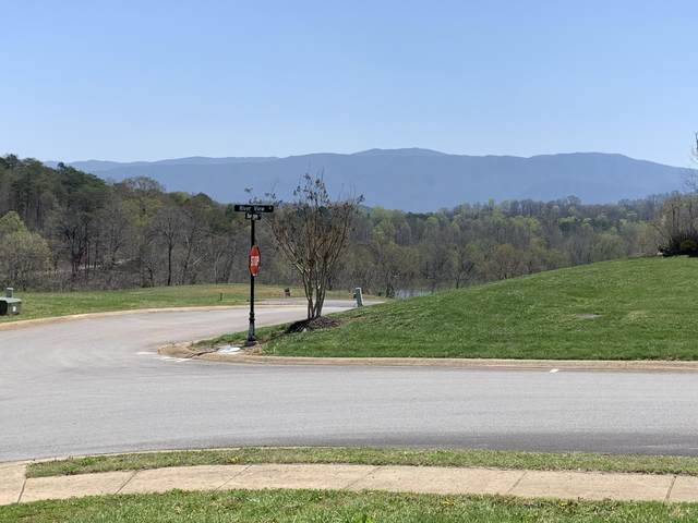 00 River View Drive, Greeneville, TN 37743 (MLS #9920352) :: The Lusk Team