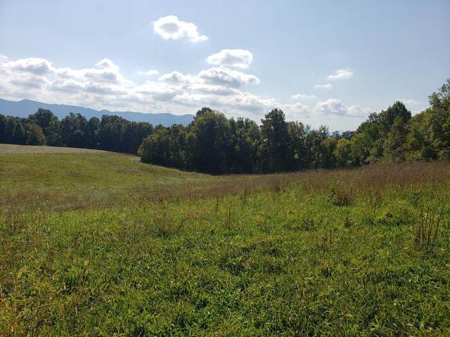 Tbd Carter Lane, Jonesborough, TN 37659 (MLS #9920432) :: Bridge Pointe Real Estate