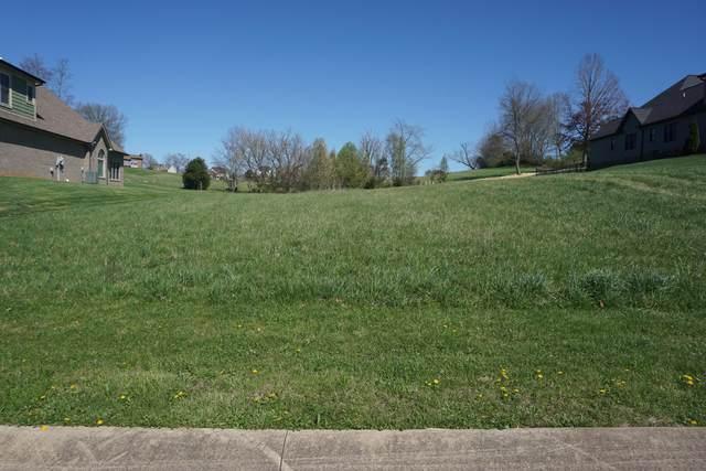 141 Forest Lane, Blountville, TN 37617 (MLS #9920445) :: Bridge Pointe Real Estate