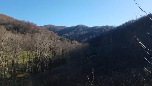 474 Sugar Hollow Road, Roan Mountain, TN 37687 (MLS #9920452) :: Highlands Realty, Inc.