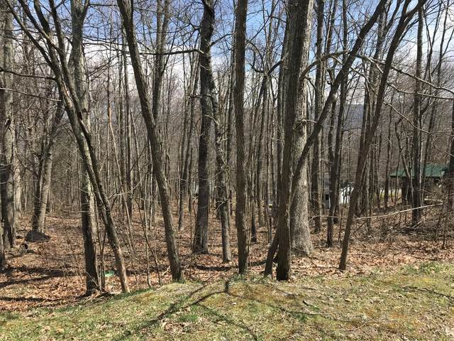 Tbd Morris Circle, Big Stone Gap, VA 24219 (MLS #9920585) :: Highlands Realty, Inc.