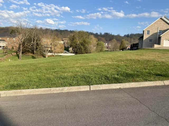 Lot 99 Ashfield Drive, Kingsport, TN 37664 (MLS #9920610) :: Bridge Pointe Real Estate