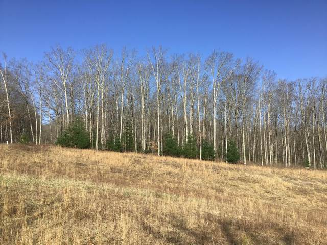Tbd Jaybird Branch Road, Coeburn, VA 24230 (MLS #9920630) :: Highlands Realty, Inc.
