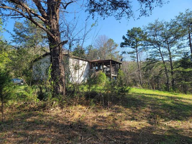 946 Butcher Valley Road, Rogersville, TN 37857 (MLS #9920668) :: Highlands Realty, Inc.