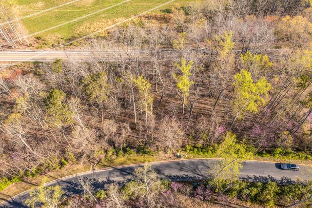 Lot 3 Shiloh Springs Road, Rutledge, TN 37861 (MLS #9920686) :: Tim Stout Group Tri-Cities