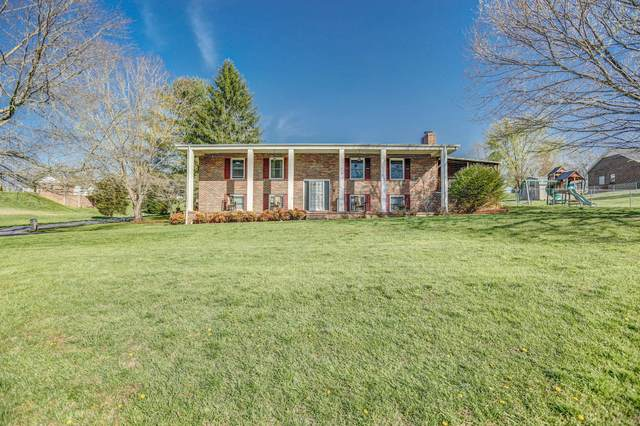 132 Silver Maple Drive, Jonesborough, TN 37659 (MLS #9920687) :: Bridge Pointe Real Estate