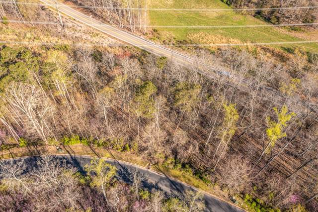 Lot 4 Shiloh Springs Road, Rutledge, TN 37861 (MLS #9920694) :: Tim Stout Group Tri-Cities