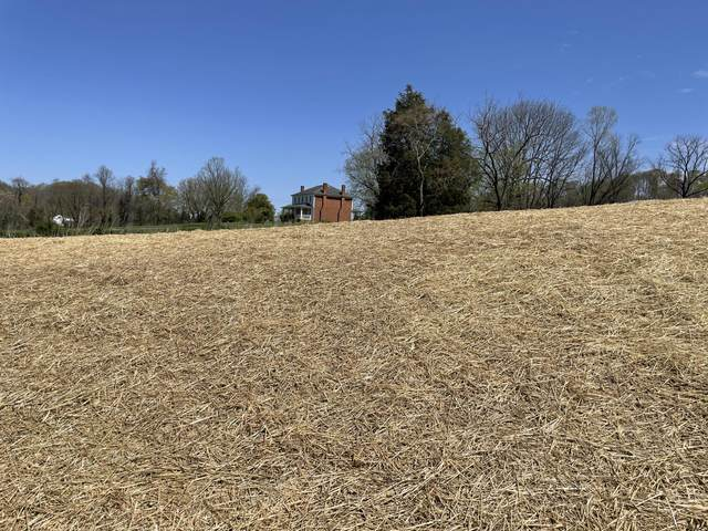 Tbd Boone Station Road, Johnson City, TN 37615 (MLS #9920706) :: Tim Stout Group Tri-Cities