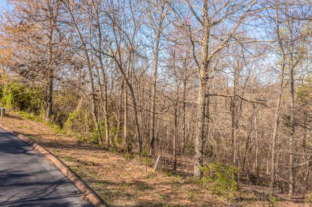 Lot 6 Shiloh Springs Road, Rutledge, TN 37861 (MLS #9920737) :: Conservus Real Estate Group