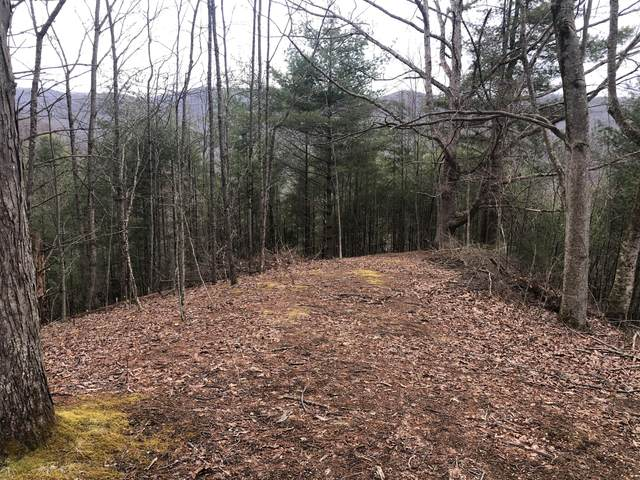 Tbd Laurel Highlands Drive, Roan Mountain, TN 37687 (MLS #9920767) :: Highlands Realty, Inc.