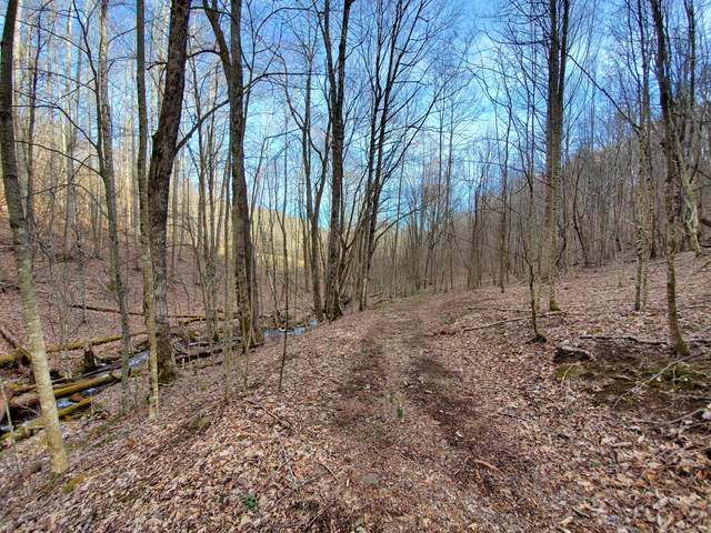 00 Red Dirt Road, Newland, NC 28657 (MLS #9920786) :: Highlands Realty, Inc.