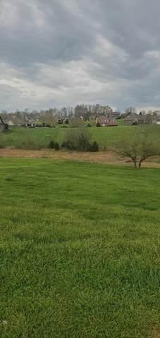 164 Forest Lane, Blountville, TN 37617 (MLS #9920791) :: Bridge Pointe Real Estate