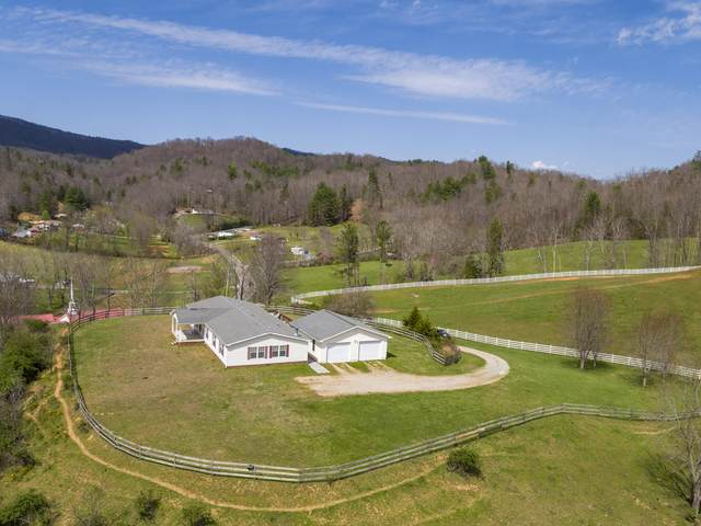 5924 Simerly Creek Road, Unicoi, TN 37692 (MLS #9920798) :: Conservus Real Estate Group
