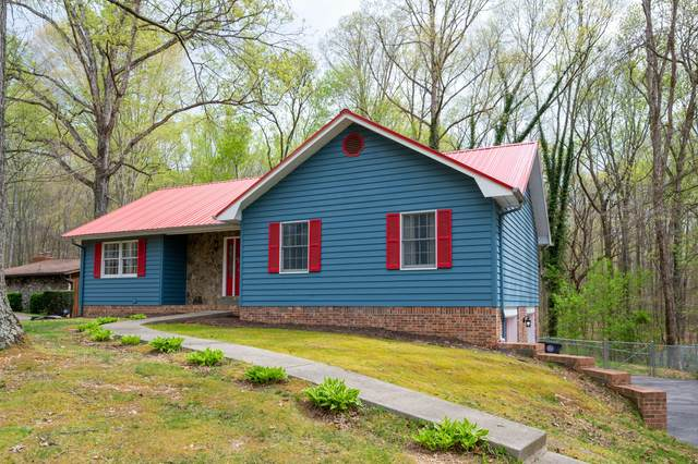 504 Dover Avenue, Mount Carmel, TN 37645 (MLS #9920816) :: Bridge Pointe Real Estate