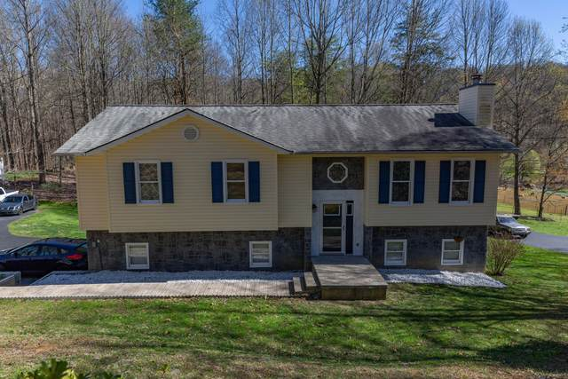 170 Young Road, Johnson City, TN 37604 (MLS #9920847) :: The Lusk Team