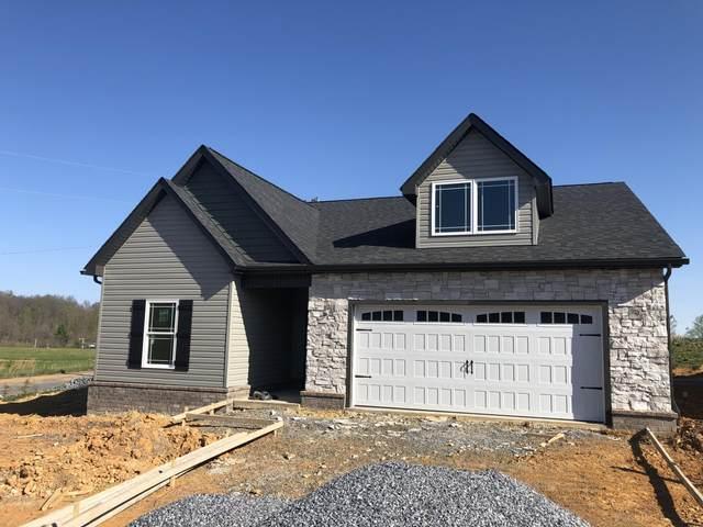232 Gunners Way, Gray, TN 37615 (MLS #9920883) :: Conservus Real Estate Group