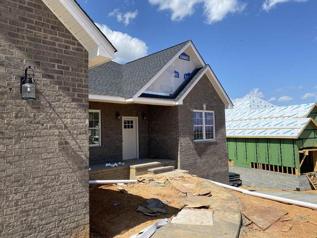 228 Holland View Drive, Jonesborough, TN 37659 (MLS #9920892) :: Conservus Real Estate Group