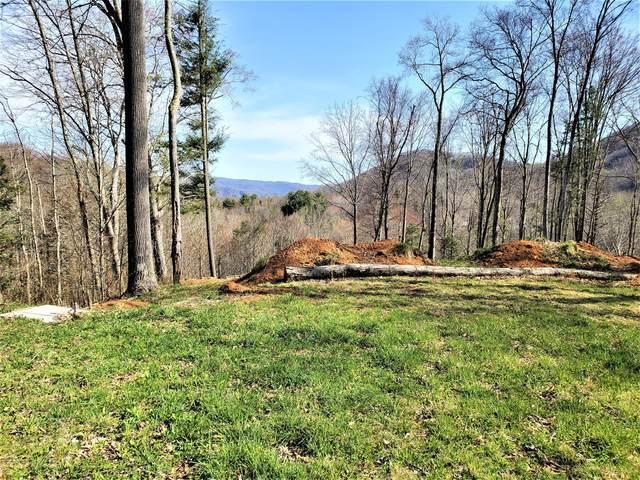 414 Eagle Ridge Road, Roan Mountain, TN 37687 (MLS #9920911) :: Conservus Real Estate Group